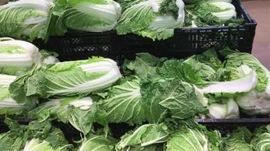 白菜の外側の葉は捨てる(レタス・キャベツも)?どの部分が食べられるの?